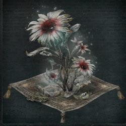 Flor de sangre fría