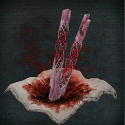 Fragmentos gemelos de piedra de sangre