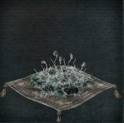 Moho de la tumba (2)