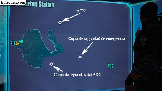 Mapa ADN