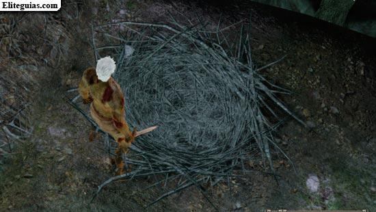 nido de Dyna y Tilo