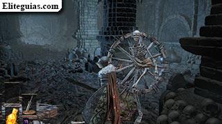esqueleto rueda