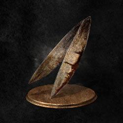 Planta espada de Hawkwood