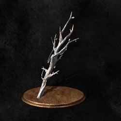 Rama de árbol de bruja