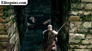Burgo de los No Muertos