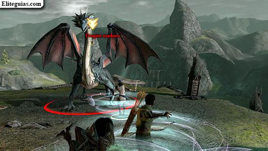 Dragón maduro
