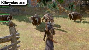 Donde deambulan los drúfalos
