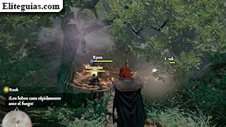 Talismán del Bosque de la Bruja