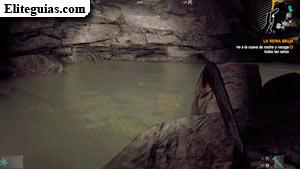 Cueva setas