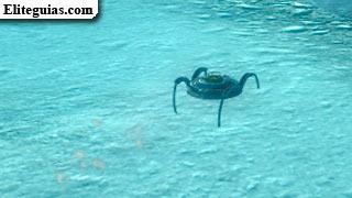Araña-Robot