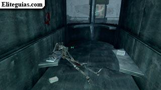 Esqueleto de Grady