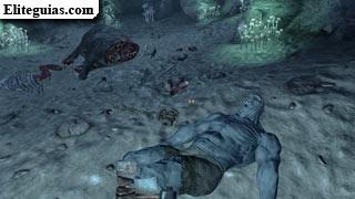 cadáver de nocturno