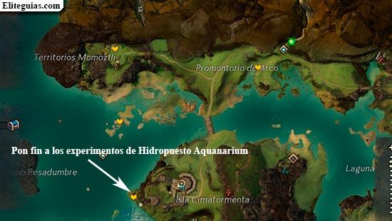 Pon fin a los experimentos de Hidropuesto Aquanarium