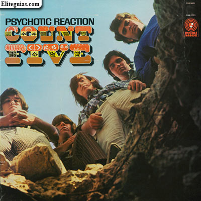 Psychotic Reaction Count Five