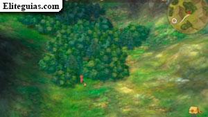 El bosque es de todos