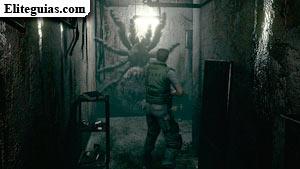 Araña del Sótano