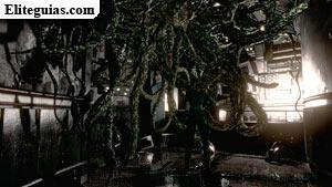 raíces de la Planta 42