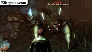 Araña de Tumba