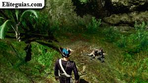 El tesoro en las tierras de caza