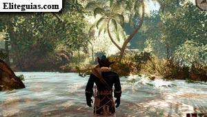 La jungla de los manglares